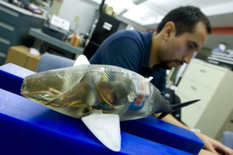 Image: Robotic fish