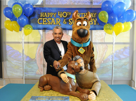 Image: Scooby Doo and Cesar Millan