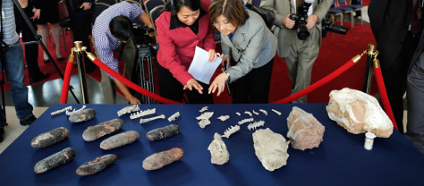 Image: Journalists look at a table full of fossils