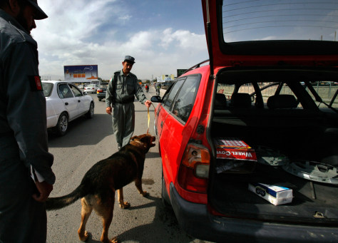 Image: A sniffer dog of Afghanistan police sniffs for explosives in a vehicle in Kabul