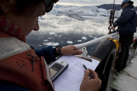 Image: Researchers deploy temperature gauges off Greenland