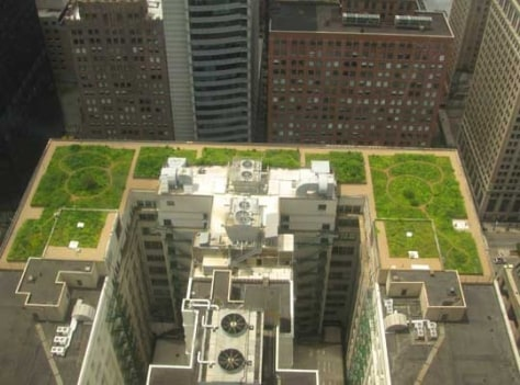 Image: Green roofs