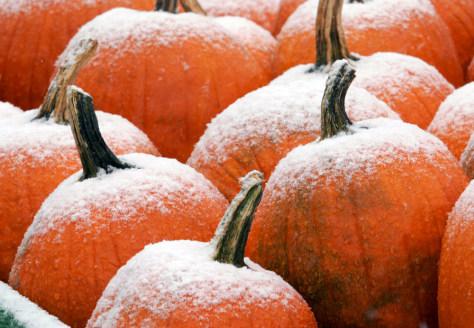 Image: Snowflakes coat pumpkins