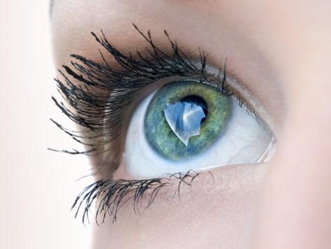 Image: eye