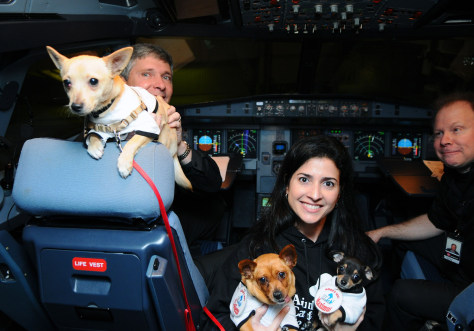 Image: VIRGIN AMERICA OPERATION CHIHUAHUA