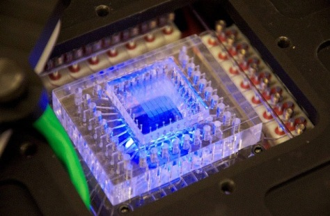 Image: Chip inside SETG instrument
