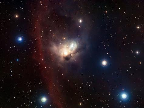 Image: Cosmic bat