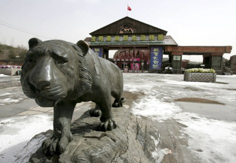 Image: A view of the gate to the Shenyang Forest Wild Zoological Garden