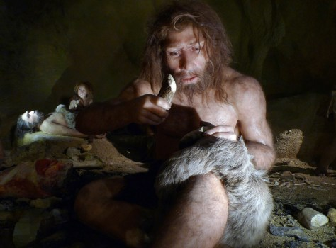 Image: An exhibit shows the life of a neanderthal family in a cave in the new Neanderthal Museum in the northern town of Krapina
