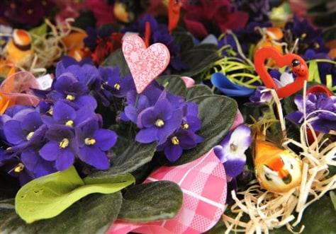 Image: Flowers