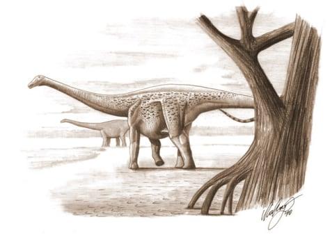 Image: Dwarf dinosaur