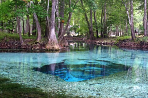 Image: Devil Springs