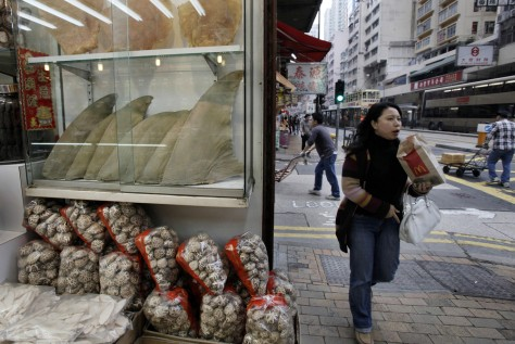 Image: Shark fins displayed in a glass case at a dried seafood shop in Hong Kong