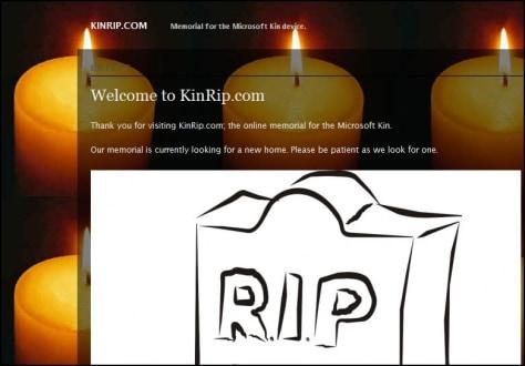 Image: KinRip.com home page