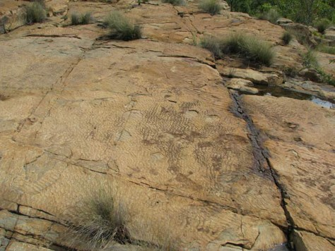 Image: Fossilized ripple marks on rock
