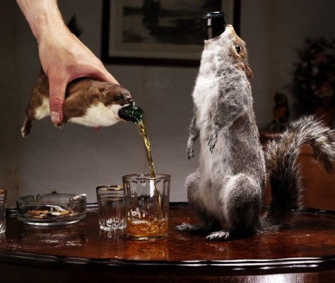 Image: Beer bottled in stuffed animals