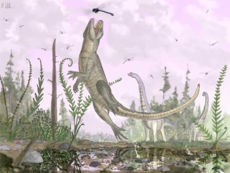 Image: Illustration of ancient crocodile relative