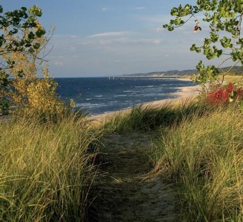 Image: Saugatuck Dunes