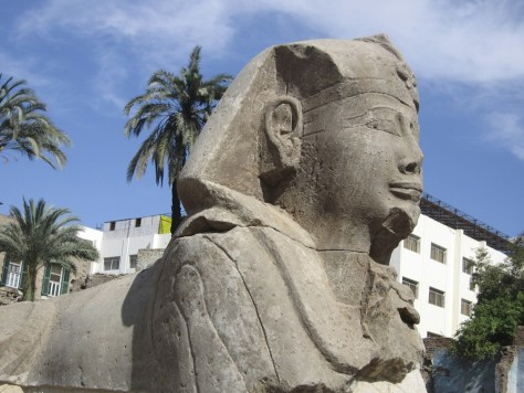 Image: Undated picture released by the Supreme Council of Antiquities of one of twelve sphinx statues in Luxor
