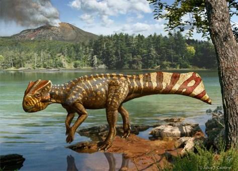 Image: Koreaceratops hwaseongensis