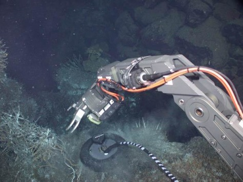 Image: Remotely Operated Vehicle probes deep in ocean