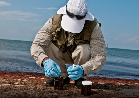 Image: Environmental technician collects samples in Mississippi