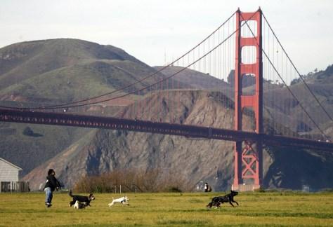Image: Crissy Field in San Francisco