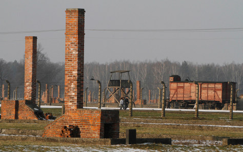 Image: Visitors at Auschwitz-Birkenau Nazi death camp in Oswiecim, Poland