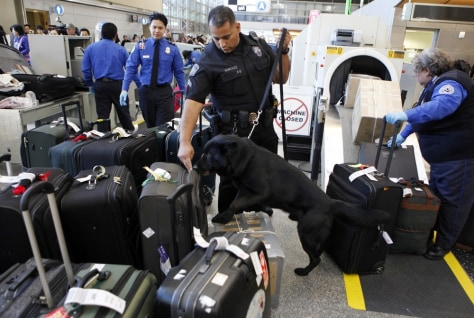 Image: In this Jan. 5, 2010 file photo, Los Angeles International Airport (LAX) Enforcement Special Unit police officers use a bomb-sniffing dog to check baggage at the Tom Bradley International Terminal.