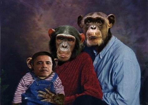 Image result for obama family as monkeys