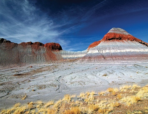 Image: Petrified Forest National Park, Arizona