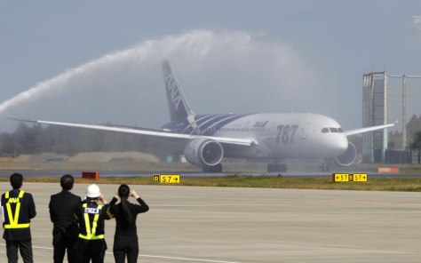 Image: All Nippon Airways' Boeing 787 Dreamliner