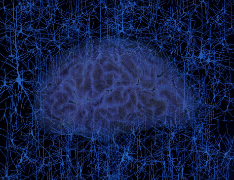Image: Brain and neurons