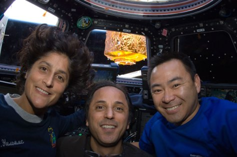 Image: Astronauts Sunita Williams, Joe Acaba and Akihiko Hoshide