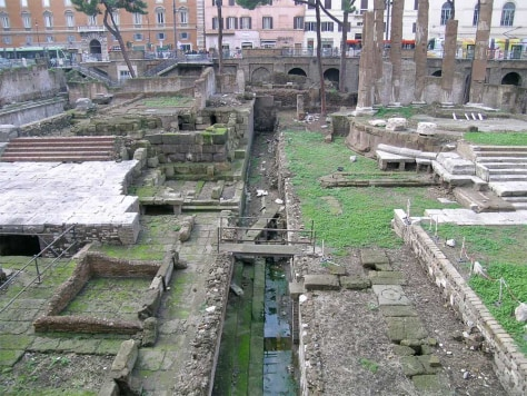 Image:Complex in Torre Argentina (Rome), where Julius Caesar was stabbed