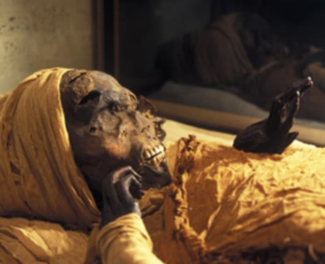 Traces of tuberculosis found in mummies of egypt