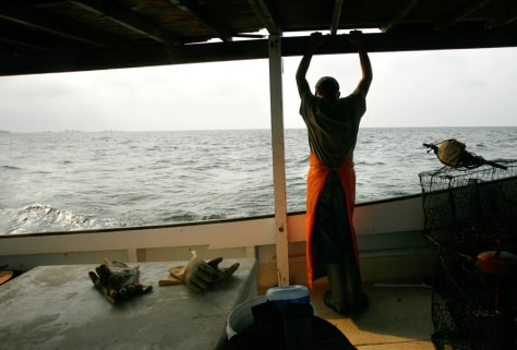 Image: Crabbing on the Chesapeake Bay