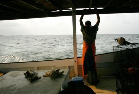 Image: Crabbing on the Chesapeake Bay