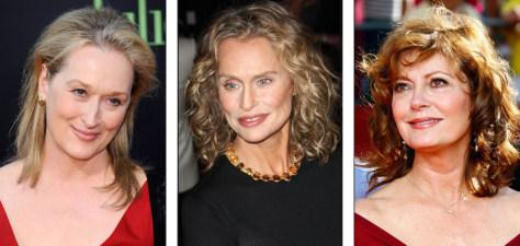Image: Meryl Streep; Lauren Hutton; Susan Sarandon