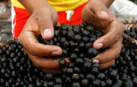 Image: Acai berries