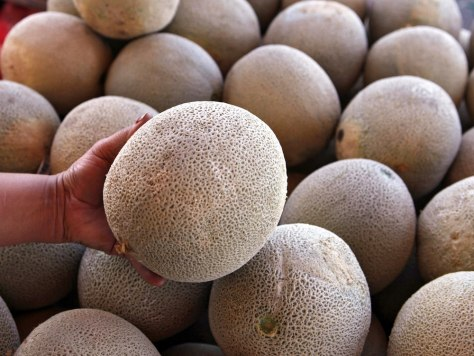 Image: Cantaloupe