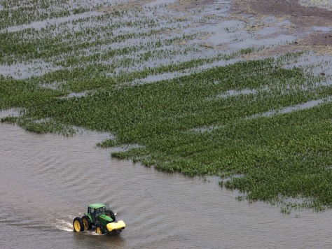 Image: A farmer drives his tractor past a flooded field of corn near Yazoo City, Miss. on Saturday.