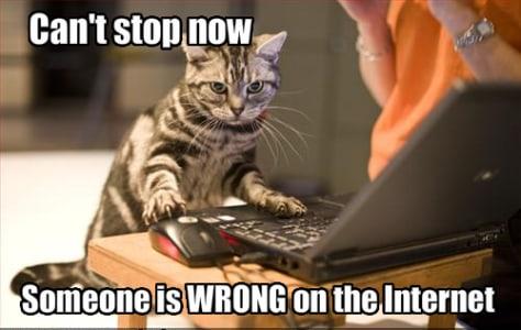 Image: Cat