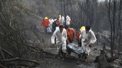 Image: Rescue team members walk past burnt woodland after a forest fire near Temuco city