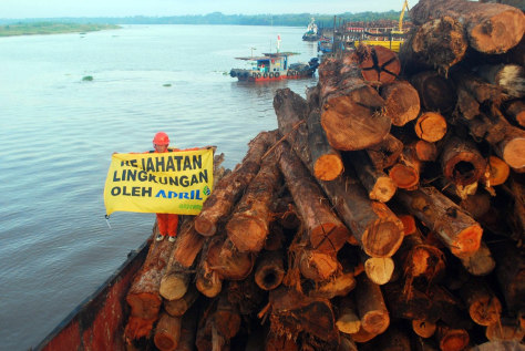 Image: Timber in Indonesia