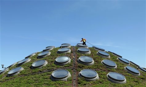 Image: Gardener waters roof garden on top of San Francisco building
