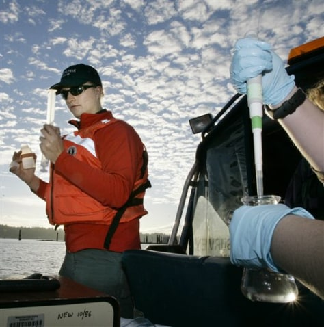 IMAGE: WATER SAMPLED IN PUGET SOUND