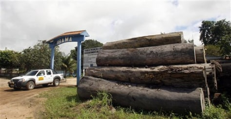 IMAGE: WOOD ILLEGALLY CUT IN BRAZIL
