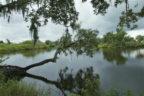 IMAGE: KISSIMMEE RIVER