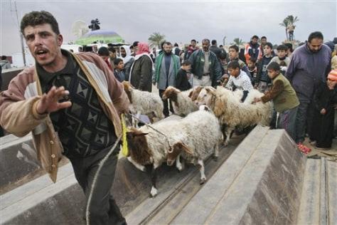 Image: Gaza border frenzy